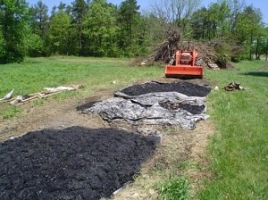 Applying Biochar image courtesy of TR Miles Technical Consultants Inc.
